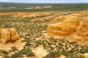 Cretaceous Formations