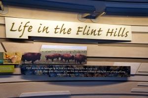 Flint Hills Discover Center