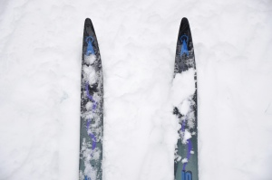 Cross country skis. Photo by Jeremy Bronson