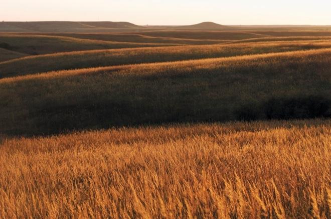 Konza Prairie. Photo by USFWS Mountain-Prairie